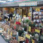 amsterdam mercado de flores