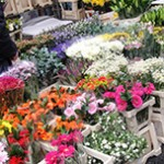 Columbia Road Flower Market - Londres