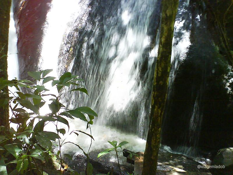 Parque da Cantareira - Núcleo Engordador - Cachoeira - SP