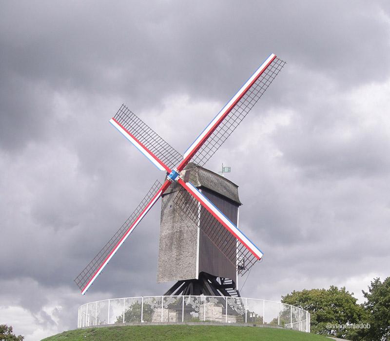 Bruges - moinho