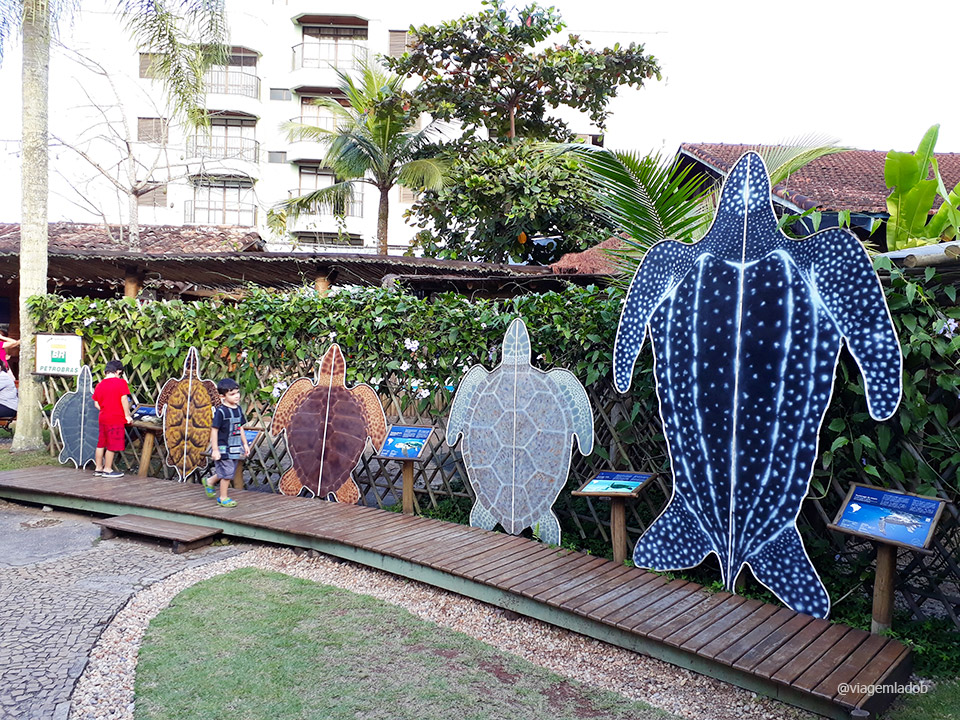Projeto Tamar Ubatuba - Réplicas das tartarugas