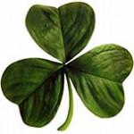Saint Patrick's Day - Padroeiro da Irlanda e com festas no mundo todo