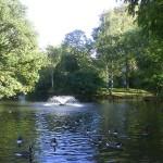 springfield-park